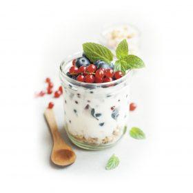 Jogurtová kultúra